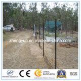 Type en acier galvanisé noir poste de l'Australie Y de frontière de sécurité d'étoile
