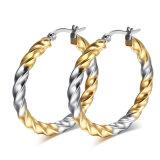 Brincos do aço inoxidável da jóia da forma dos acessórios de forma (EE0370)