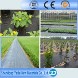 Pond Liner Used Super Surface HDPE Geomembrane