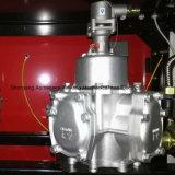 Posto de gasolina das bombas dobro e dos quatro indicadores