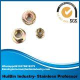 Dispositifs de fixation de noix de bride d'hexagone d'acier inoxydable d'acier du carbone