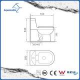 Badezimmer-Wasser, das keramischer Wandschrank Siphonic einteilige Toilette sichert