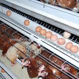Клетка оборудования цыплятины цыпленка слоя от Китая