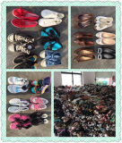 De goedkope & Grote Grootte Gebruikte Schoenen van de Tweede Hand van Schoenen (fcd-002)