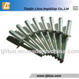 Het uitstekende Open Type van Klinknagel van het Aluminium Koepelvormige Blinde