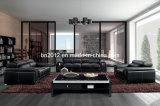 居間の本革のソファー(SBO-BZ-2992)