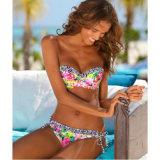 Europa und die Vereinigten Staaten der neue Dame-Bikini