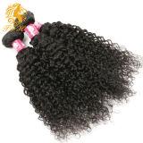 Cheveu bouclé crépu brésilien de Vierge paquets brésiliens d'armure de cheveu de Vierge de 4 paquets de cheveu d'armure de vison bouclé crépu brésilien de cheveux humains