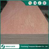 madera contrachapada del anuncio publicitario de 12m m Bintangor