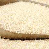 [سب-10د] يضمّ صغيرة أرزّ [شلّر] آلة
