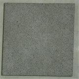 رخيصة طبيعيّ [غرين كلور] حجر رمليّ