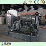 gruppo elettrogeno insonorizzato diesel del gruppo elettrogeno 250kw