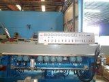 Glasabschrägenmaschine von 9 Motoren für das Spiegel-Polnisch (BXM261B)