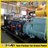 Biogas-Generatoren mit CER