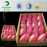 Stärke kundenspezifisches EPE Polyäthylen-Schaumgummi-Verpackungs-Blatt mit perforierter Zeile