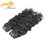Самые лучшие продавая человеческие волосы Remi девственницы индейца 100%
