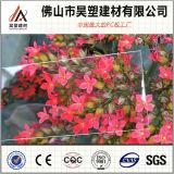 folha contínua 0.75mm do PC do policarbonato da parede do toldo do telhado do plástico de 0.75mm