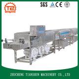 Máquina da limpeza de frasco/arruela plásticas Tsxp-30