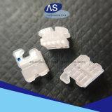 Nuovo fornitore di ceramica ortodontico Cina delle parentesi con l'alta qualità