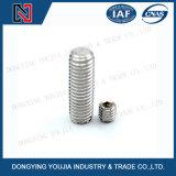 Parafusos de fixação do soquete do hexágono do aço DIN913 inoxidável com ponto liso