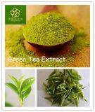 100% طبيعيّ [غرين تا] مقتطف شاي [بولفنول] 98%