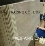 Bonne qualité Faible prix 18mm Placage aux cendres naturelles Fancy Plywood