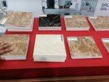 Qingdao Zhongsu Belüftung-Marmorblatt, das Maschine herstellt