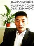 6063 Aluminiumstrangpresßling-Profile/verdrängten Aluminiumprofil für Windows