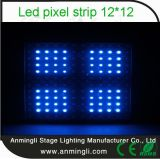 EventのためのLED Pixel Strip Madrix Controlled 12*12
