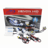 Cheap Price Canbus HID Lastro para HID Xenon Light