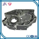 High Precision OEM Custom Die Cast Parts (SYD0033)