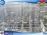 Andaime do frame para a construção (FLM-SF-001)