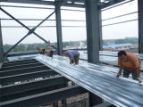 구조상 루핑을 지붕을 다는 강철 루핑 조립식 루핑 강철 구조물