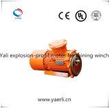 Explosiebestendige Asynchrone Motor In drie stadia voor de Kruk van de Mijn