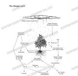 질소 비료 N 21% 염화 황산염 결정