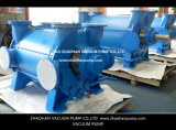 Terminar o sistema de bomba do vácuo para a polpa e a indústria de papel
