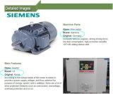 Máquina de proceso de los macarrones de las pastas