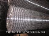 Rete metallica saldata galvanizzata a Anping Supllier