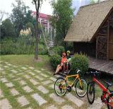 """bici elettrica piegante della montagna 22 """" 48V"""
