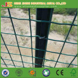 Groen pvc van de Kleur bedekte het Openen van 50*50mm de Omheining van het Netwerk van de Draad van het Gevogelte van het Kuiken met een laag