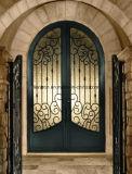Handgemachte dekorative bearbeitetes Eisen-Eintrag-Tür