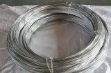 亜鉛塀のための上塗を施してある金属の鉄ワイヤー