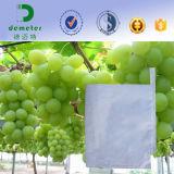 Hersteller-Zubehör-biodegradierbares Wachs beschichtete Traube bauen Papierbeutel-Frucht sich schützen an