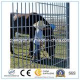 Qualitäts-im Freien Stahlpfosten-bearbeitetes Eisen-Zaun