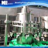 Edelstahl-Fruchtsaft-Plombe und Verpackungsmaschine