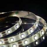 Striscia epistar di CC 12/24V 3528 LED della colla IP65 4.8W/m di ab