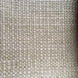 100%Polyester raffinent le tissu tissé de sofa (G080)