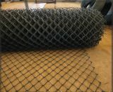 PVC Coated Diamond Wire Mesh 또는 Fence Green Color Chain Link Fence