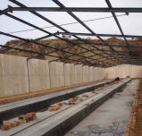 Casa de pollo de la estructura de acero en venta