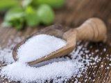 Estratto organico della polvere di Stevia dal foglio secco di Stevia